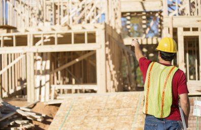 Building construction-cannon pest management