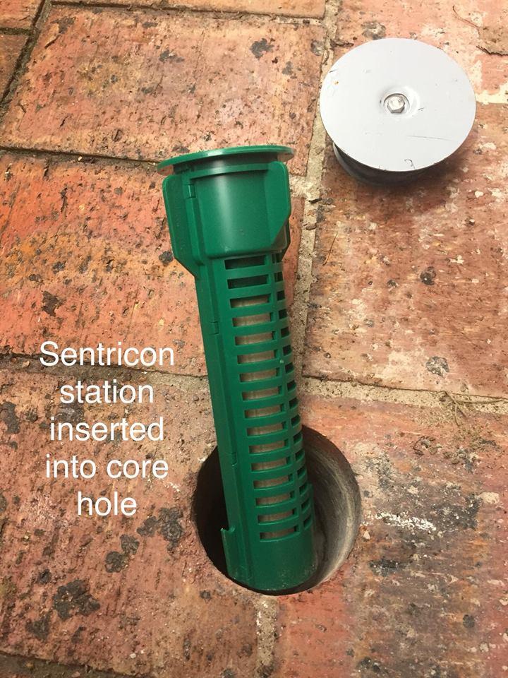 sentricon termite bait stations