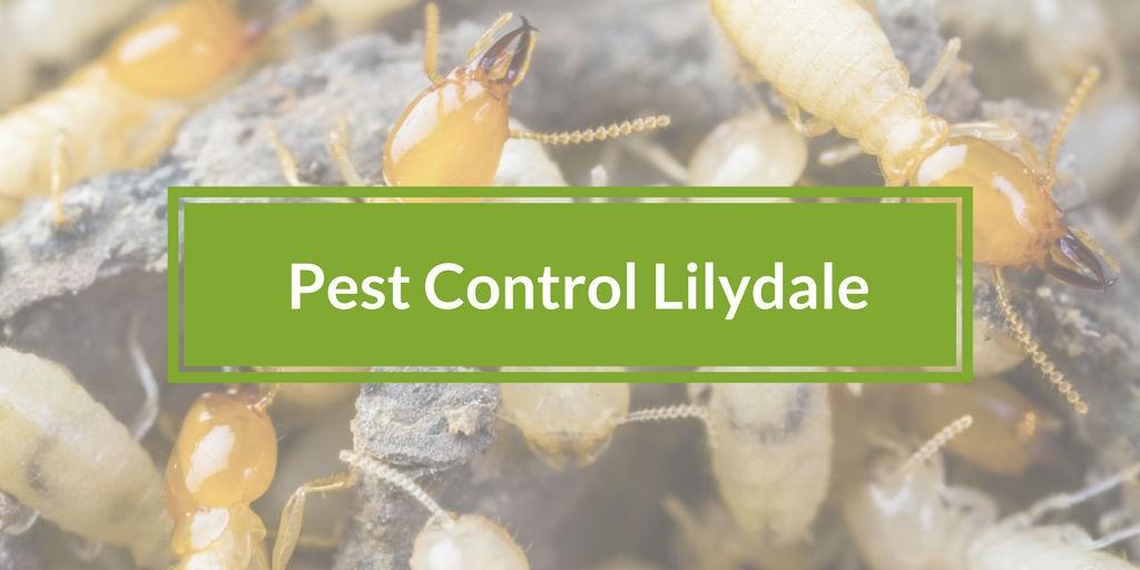 pest control lilydale