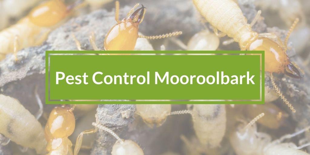 Pest Control Mooroolbark