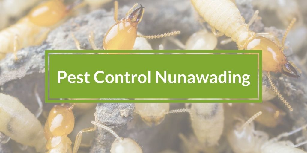 Pest Control Nunawading