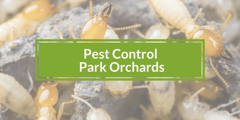 Pest Control Park Orchards