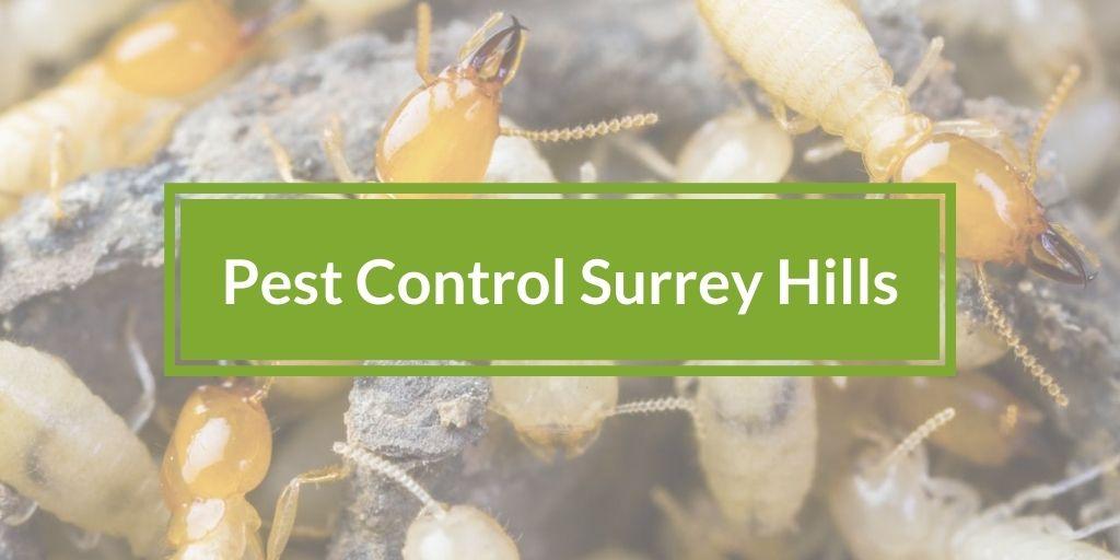 Pest Control Surrey Hills